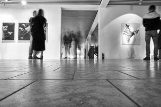 Magda Krawcewicz, installation view