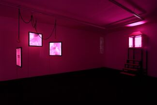 Wang Xin - Every Artist Should Have A Solo Show, installation view