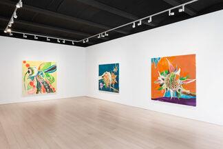 Santi Moix: A Moment, installation view