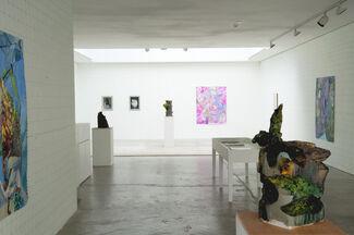 Alessandro Roma | Enclosure, installation view