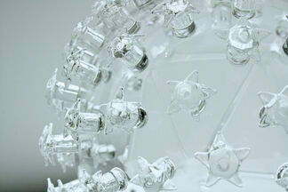 Impermanence: The Art of Microbiology, installation view