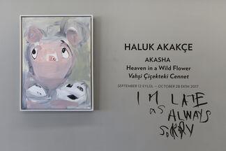 AKASHA, Heaven in a Wild Flower, installation view