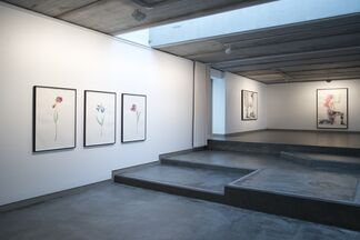 Marc Bauer - Static/Unfolding Time, installation view