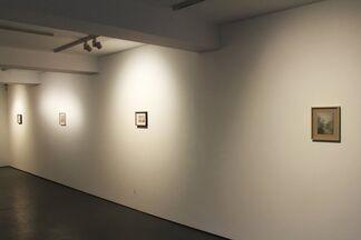 Briony Anderson: Emergent View, installation view