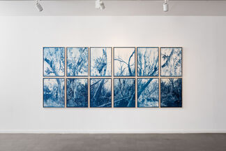 Lucid Dreams, installation view