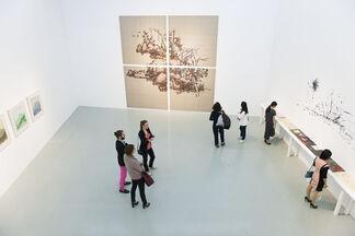 Ye Yongqing: Hidden in the Grass, installation view