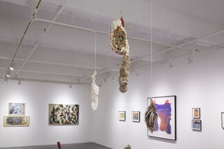 Rings Around the Moon, installation view