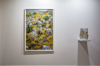 Instituto de Visión at Art Dubai 2019, installation view