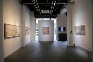 Trilogy: The Other World of Zhang Wen, installation view