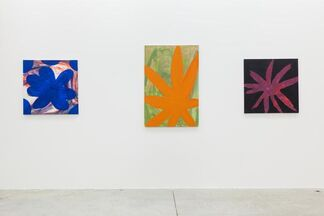 Two Projects: Tamuna Sirbiladze, installation view