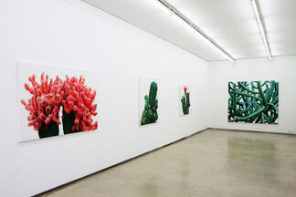 Kwangho Lee : TOUCH, installation view
