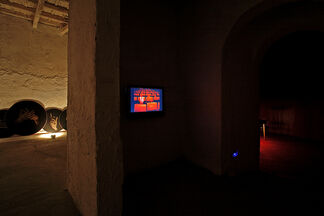 Luis Gonzàles Palma - Jerarquìas De Intimidad (La Anunciacion), installation view