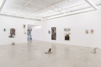 Hole, installation view