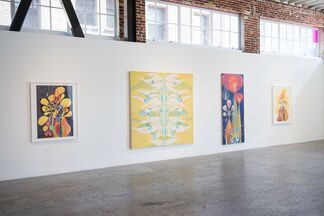 We Are All Made Of Light, installation view