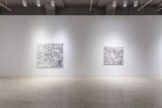 Kate Bright: Edge Lands, installation view