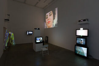 The Undulation of Something Faintly Familiar, installation view
