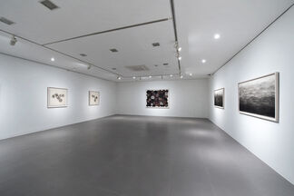 Minjung Kim- Paper, Ink and Fire: After the Process, installation view