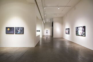 Stacey Steers | Trilogy, installation view