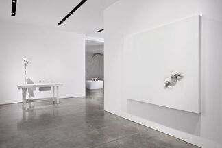 David Altmejd, installation view