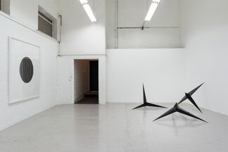 A Strong Affinity, installation view