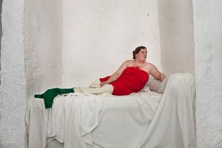 Herma Auguste Wittstock, installation view