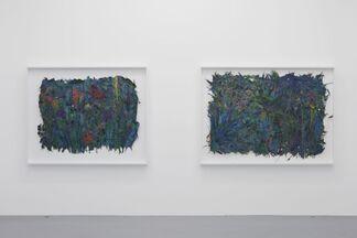 Lionel Estève: a wander, installation view