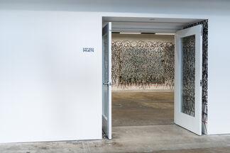 NOAH, installation view