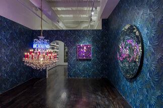 Carlos Rolón: Buscando América, installation view
