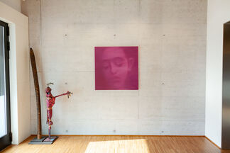 Into the Pink, installation view