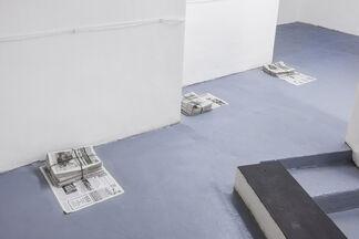 TELEPATHY OR ESPERANTO, installation view