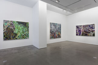 Allison Gildersleeve: Elsewhere, installation view