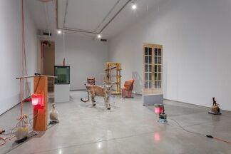 Dolores (organized by Todd von Ammon), installation view