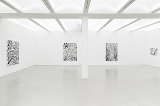 "Farhad MOSHIRI ""Snow forest"", installation view"