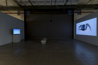 IN FACT, installation view