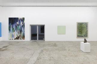 XXX die II., installation view