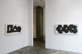 The Whip: Yang Jiechang, installation view