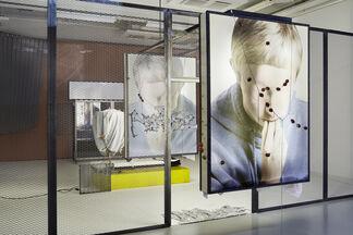 Inhuman, installation view