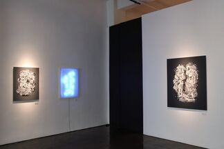 """Carol Salmanson: """"Two Sides to a Coin"""", installation view"""