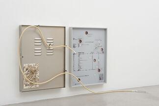 Jesse Stecklow: Potential Derivatives, installation view