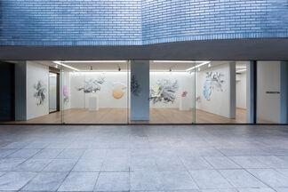 DANIEL ARSHAM  カラー・シャドウ (COLOR SHADOW), installation view