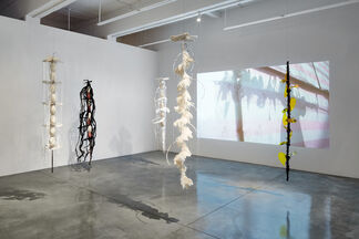 Happy Together, installation view