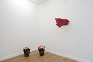 Le Bayou, installation view