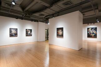 Ori Gersht: On Reflection, installation view