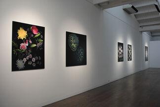 Huang Xu: Illumination, installation view