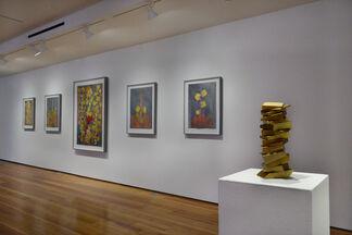 Wayne Amedee, installation view