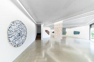 Claude Viallat solo exhibition, installation view