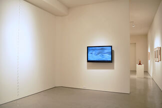 DISSECTING NATURE, installation view