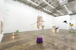 Autumn Casey | AGALMA, installation view