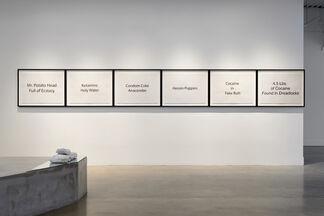 Julio César Morales: Emotional Violence, installation view