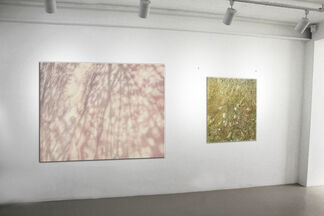 Axis of space and time, installation view